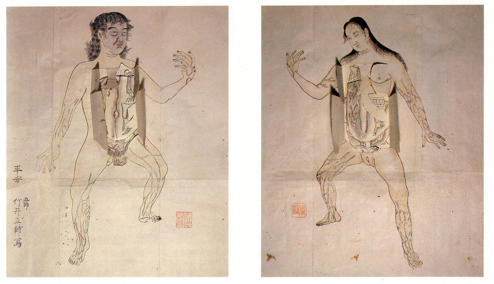 Anatomical illustrations from Edo-period Japan ~ Pink Tentacle