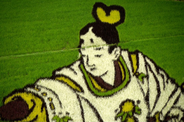 Rice paddy crop art in Japan, 2010 --