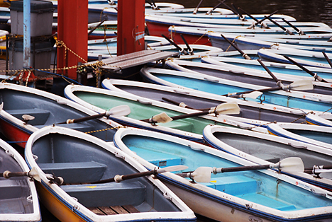 Paddleboats --